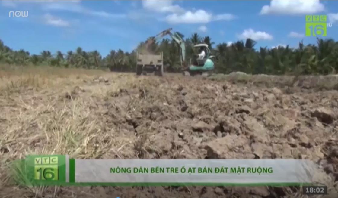 Nông dân Bến Tre -đua nhau- cào bán đất mặt ruộng
